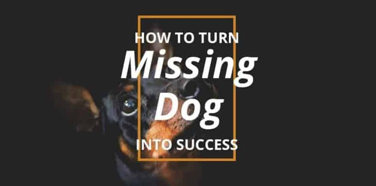 Turn Missing Dog Into Success