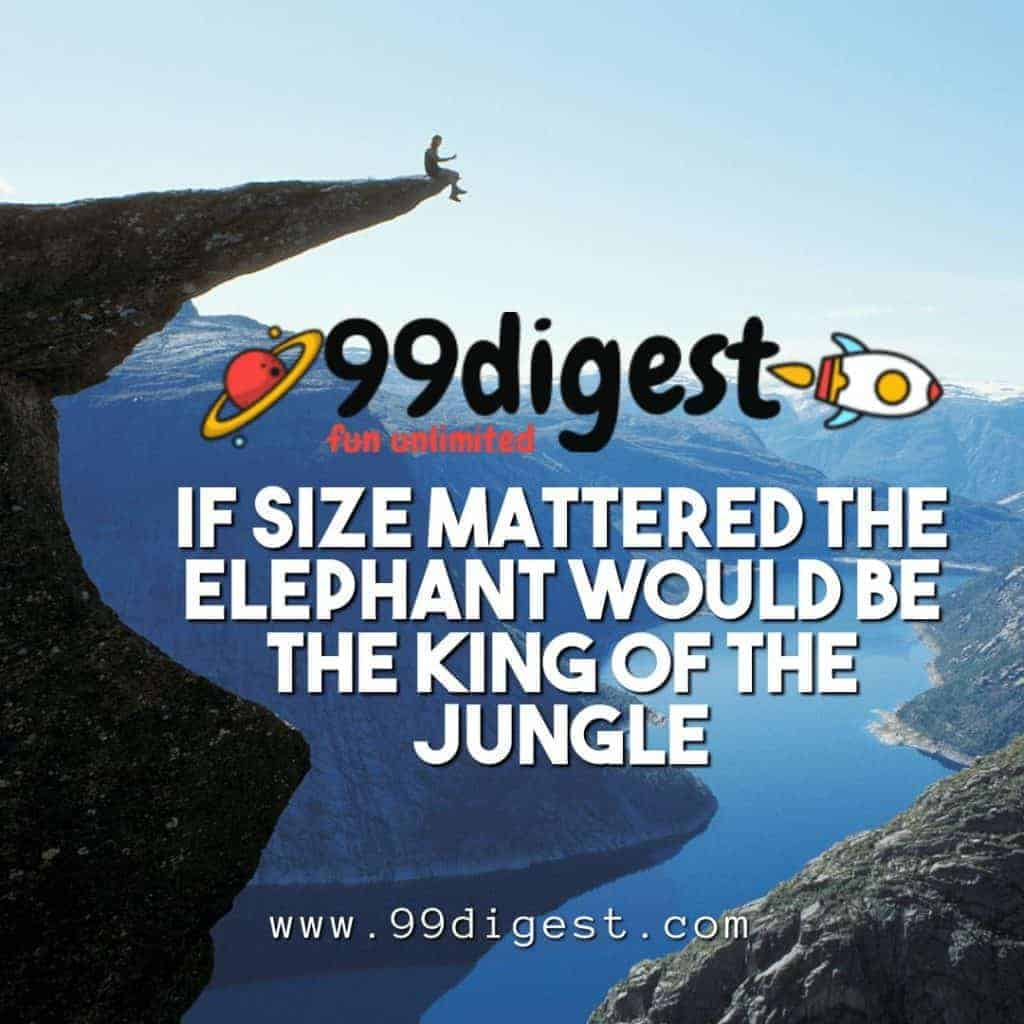 Jungle Source of Motivation IF Size Mattered The Elephant Would Be The king Of Jungle